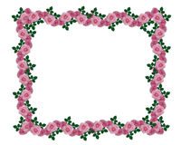Pink roses garland border Stock Photo