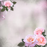 Pink roses on a gentle romantic vintage background with space for text or photo Stock Photography