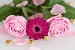 Pink roses and gerbera flower with golden hearts Royalty Free Stock Photos