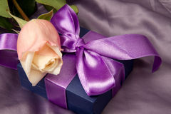 Pink roses and gift box Stock Photography