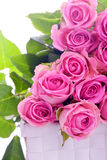 Pink roses in a gift box Stock Photography