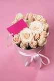 Pink roses in gift box Royalty Free Stock Photos