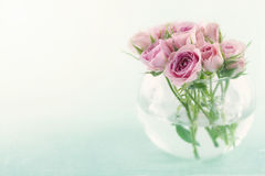 Pink roses in a glass vase Stock Photos