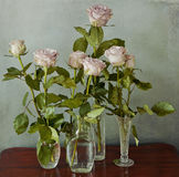 Pink roses in glass vases Royalty Free Stock Image