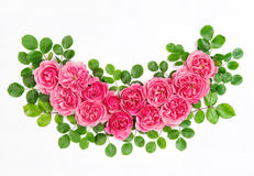 Pink roses with green leaves pink flowers bouquet Royalty Free Stock Images