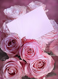 Pink roses with a greeting card. Bouquet of pink roses with a greeting card Royalty Free Stock Photo