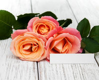 Pink roses and greeting card Royalty Free Stock Photo
