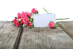 Pink roses and greeting card Stock Image