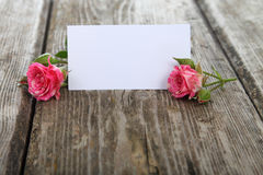 Pink roses and greeting card Stock Images