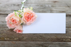 Pink roses and greeting card Royalty Free Stock Photos