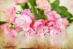 Pink roses on grunge background Royalty Free Stock Images