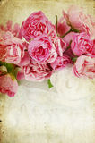 Pink roses on grunge background Stock Photo