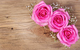 Pink Roses and Gypsophila on Wooden Background Stock Image