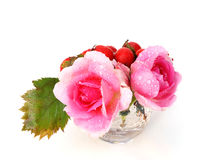 Pink roses and haw berries Stock Image