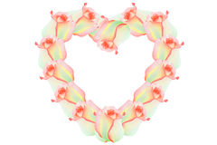 Pink roses. Heart of roses, orange flowers Royalty Free Stock Images
