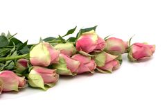 Pink roses and hearts. Valentine Card. Romantic still-life with bouquet of pink roses and Stock Photo