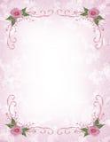 Pink roses Invitation border vector illustration