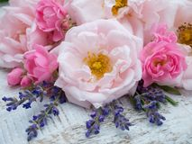 Pink roses and lavender bouquet on the rustic background Stock Photos