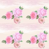 Pink roses on light Royalty Free Stock Photo