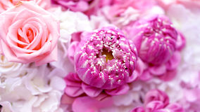 Pink roses and lotuses flower easter and western beauty concept Royalty Free Stock Photography