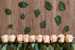Pink roses lying on wooden background. Background for spring themes. Stock Photos