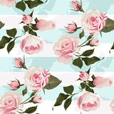Pink roses on a mint green stripes vector seamless pattern Flowered background of botany illustration royalty free illustration