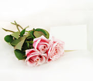 Pink Roses and Note royalty free stock images