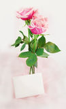 Pink Roses and Note Stock Photos