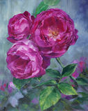 Pink roses - oil on canvas Royalty Free Stock Photos