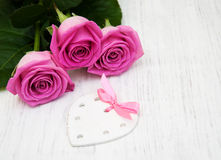 Pink roses Stock Image