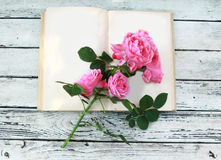 Pink roses on open book Stock Images