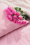 Pink roses on pillow Stock Images