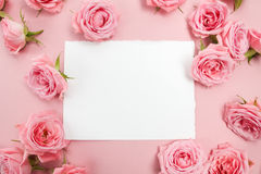 Pink roses on pink background with space for text. Flat lay, top view Stock Images
