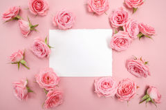 Pink roses on pink background with space for text. Flat lay, top view Royalty Free Stock Photo
