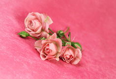 Pink roses on pink velvet Royalty Free Stock Images