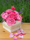 Pink roses and provence lavender bouquet in the wooden box Royalty Free Stock Photos