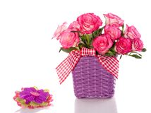 Pink roses in a purple flower pot Stock Photography