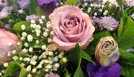 Pink roses with purple flowers bouquet Stock Photography