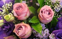 Pink roses with purple flowers bouquet Royalty Free Stock Photos