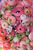 Pink roses and ranunculus bridal bouquet Stock Photos