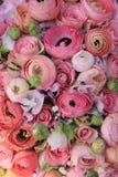 Pink roses and ranunculus bridal bouquet Stock Photos