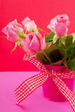 Pink roses on red Stock Photography