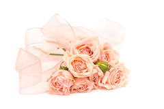Pink roses and ribbons isolated Royalty Free Stock Images