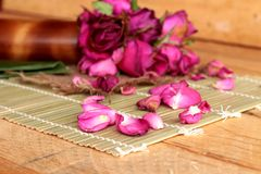Pink roses and rose petals were sprinkled fallen. Stock Images