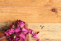 Pink roses and rose petals were sprinkled fallen. Royalty Free Stock Photography
