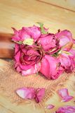Pink roses and rose petals were sprinkled fallen. Royalty Free Stock Photo