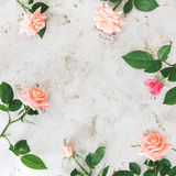 Pink roses on rustic metal surface. Pink roses arranged on rustic metal surface. Top view, blank space, vintage toned image stock images