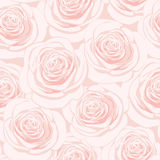 Pink roses seamless pattern. Seamless pattern with pink roses Stock Photography