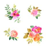Pink roses. Watercolor flowers set for greeting card decor. Drawing roses. Wedding invitation floral design.