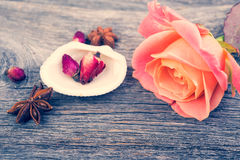 Pink roses and shell, vintage style, spa theme. Royalty Free Stock Photography